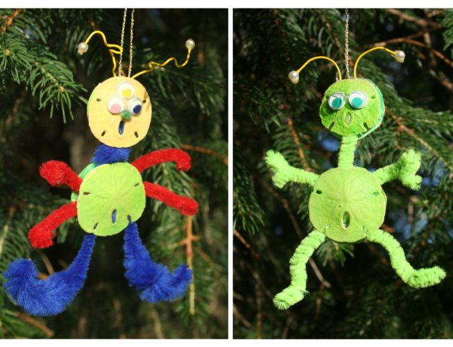 """""""Alien life forms found at the Beach!""""  Always fun to have a quirky ornament to look for on the Christmas tree...  READ MORE"""